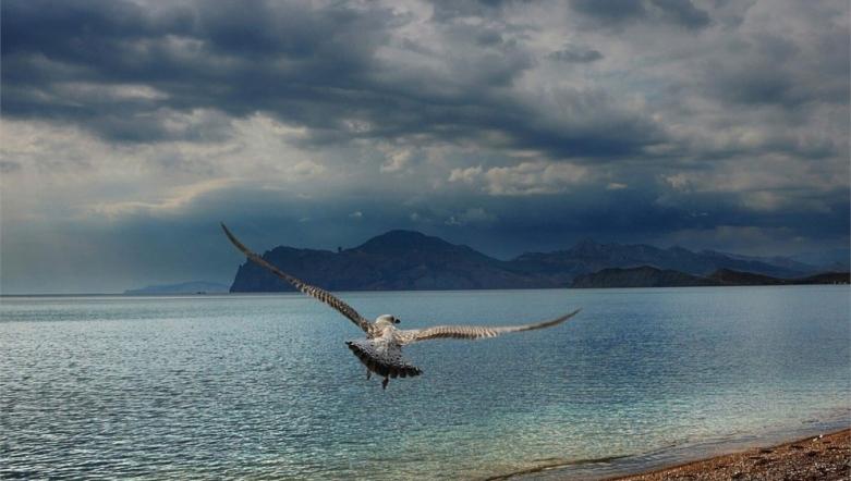 Крым с высоты птичьего полёта